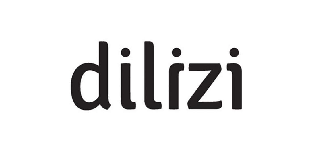 Logo Dilizi TPE